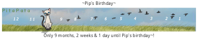 PitaPata Cat tickers