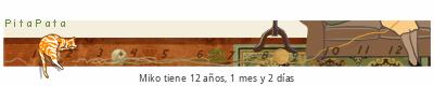 PitaPata tickers gato